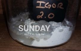 2017-08-07_09.09.55[1]
